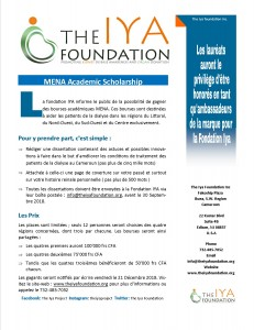 French - Iya Foundation MENA Academic Scholarship